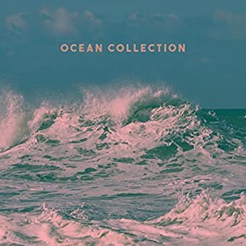 Ocean Collection