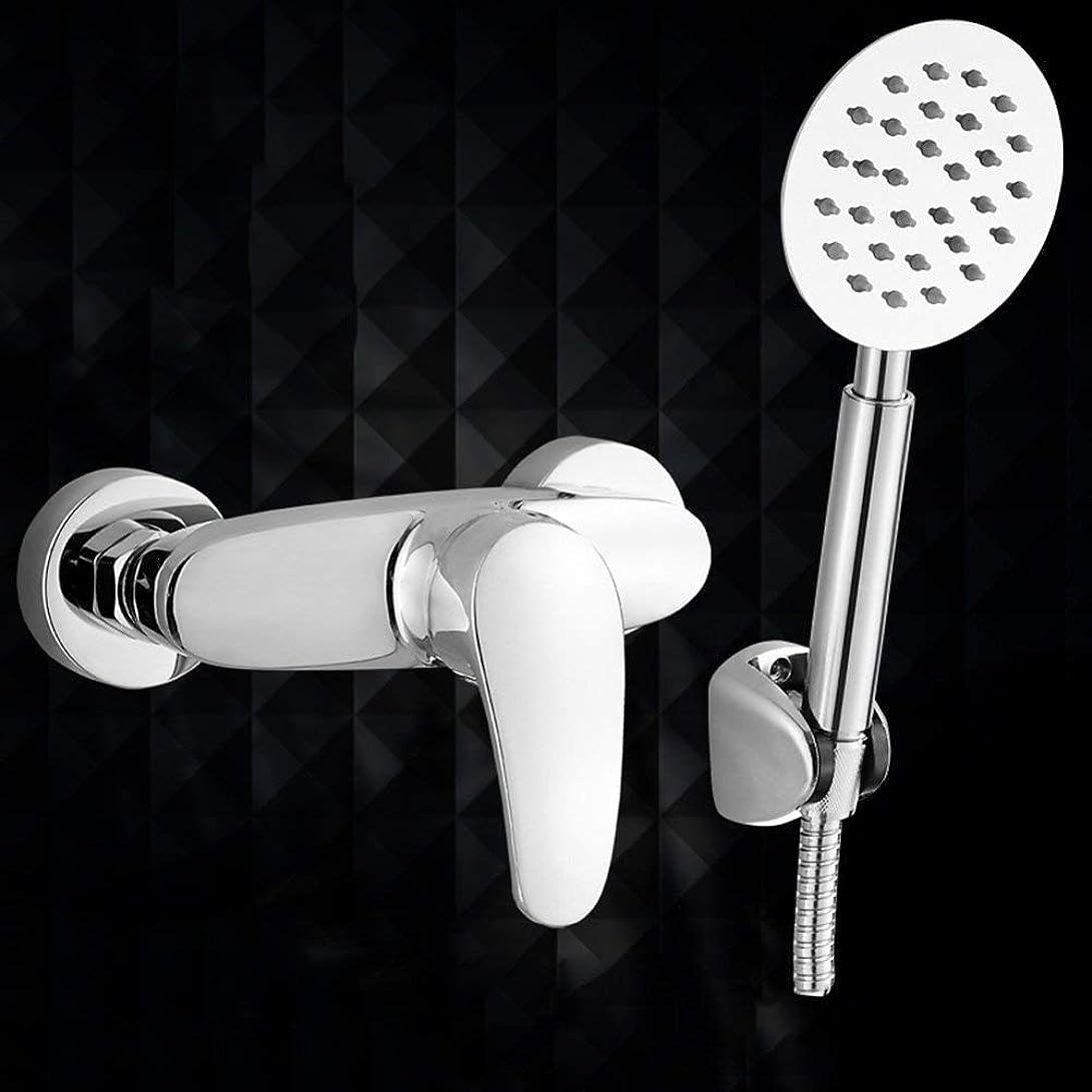 不足協会はしご実用的なハンドシャワー シャワーを浴びるシャワー浴室を浴びる加圧シャワーヘッドシャワーヘッドノズル加圧レインシャワーハンドヘルドバスシャワーヘッドステンレス鋼と銅材料 (Color : 1)