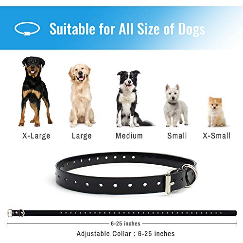 Petrainer 3 Mode Dog Collar with Remote Control