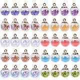SUNNYCLUE 1 Caja 40 Piezas 10 Estilos 16 mm Mini Botella de Globo de Cristal Transparente Vacía Deseo Bola de Cristal con Estrellas Coloridas Lentejuelas de Frutas de Corazón, Lentejuelas