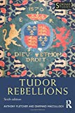 Tudor Rebellions (Seminar Studies)