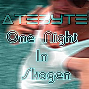 One Night In Skagen