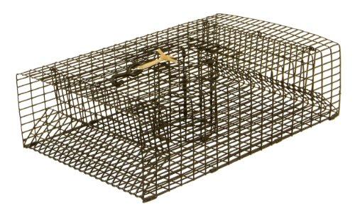 Protoco - Trampa para cangrejos (22,8 x 45,7 cm)