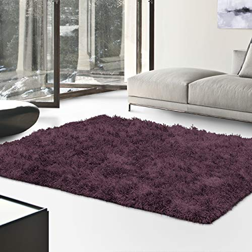 Superior Hand Tufted Thick, Plush, Cozy Quality Shag Textured Area Rugs, Purple - 4' x 6'