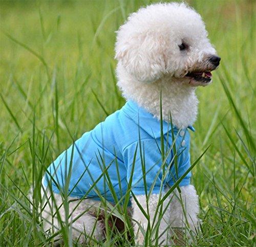 nobrand huisdier hond kat polo T-shirt meerkleurig casual suit katoenen jurk XS-XL, XL, Blauw