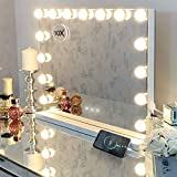 Hansong Vanity Mirror with 15 pcs LED, Extra Large...