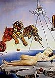 Dalì Poster 02 cm 50x70 Poster Affiche Plakat Fine Art Il
