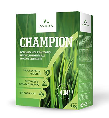 AVARA Champion - semi prato - resistente alla siccitá - indicato per qualsiasi luogo e terreno - 1kg
