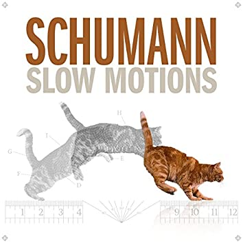 Schumann Slow Motions