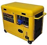 Generador eléctrico 6 KW monofásico - Diesel - Grupo electrógeno insonorizado -...