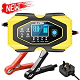 Directtyteam Car Battery Charger 12V6A 24V 3A Lithium Lead Acid Battery Universal Battery charger for all...