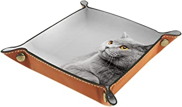 Shallow Storage Bin Box Desktop Organizer Containers Baskets Cube with British Shorthair Cat Lying On The Table