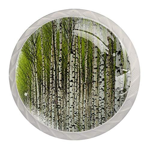 Schubladengriffe aus Birkenholz, für Schrank, Frisiertisch, Kommode, mit Schrauben, 4 Stück
