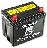 ARNOLD - Batterie AGM 12V 16AH 280CCA pour tondeuse autoportée, AZ100