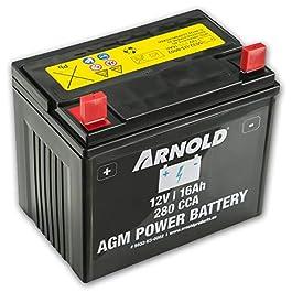 ARNOLD – Batterie AGM 12V 16AH 280CCA pour tondeuse autoportée, AZ100