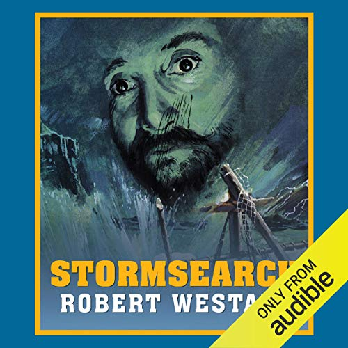 Stormsearch audiobook cover art