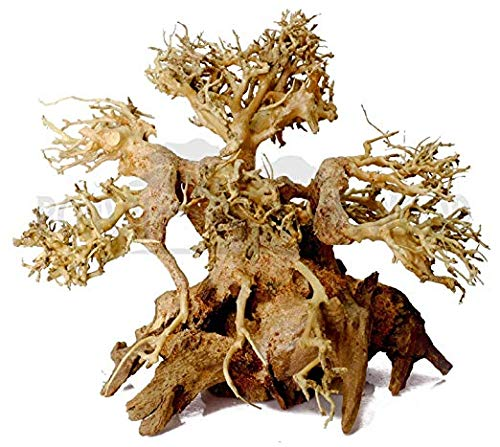 SevenSeaSupply Dragon Driftwood - 6' High Bonsai Driftwood Aquarium Tree for Aquascaping - Fresh Water Aquarium
