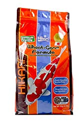 winter wheatgerm koi food