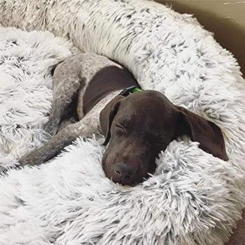 Puppy Love Panier Chien, Coussin Chien Anti Stress XXXL Dehoussable,Paniers Et Mobilier pour Chiens, Lit Moelleux Rond pour Chien, Lavable, Confortable(品牌:HJHY)