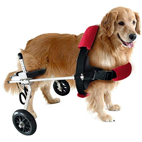 WSXX Silla De Ruedas De Mascotas Caminar Carro Scooter Silla De Ruedas para Perros Mascotas Débil Paralizado para Discapacitados Pierna Trasera 2 Ruedas De Ruedas Trasera para Perros(Size:XSW)