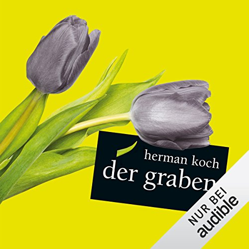 Der Graben audiobook cover art
