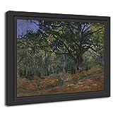 Printed Paintings Marco Americano (55x40cm): Claude Monet - El Roble de Bodmer,...