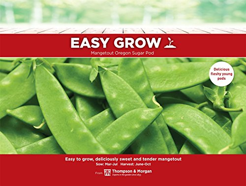 Thompson & ‿Morgan Easygrow Mangetout Oregon Sugar Pod 150 graines