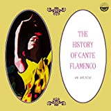 The History of Cante Flamenco: An Archive