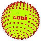 LUDI - Balle sensorielle bicolore pour l'éveil de bébé. Dès 6 mois. Petits picots durs. Balle de jeu ou de massage facile à agripper. Diamètre : 15 cm - réf. 30018
