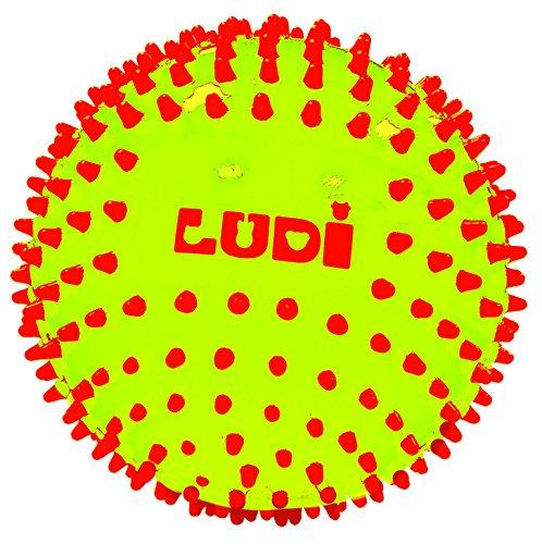 Ludi 30018 - Pelota sensorial Bicolor para el Despertador del bebé a Partir de 6 Meses pequeños Puntos Duros, Pelota de Juego o de Masaje fácil de agarrar diámetro 15 cm