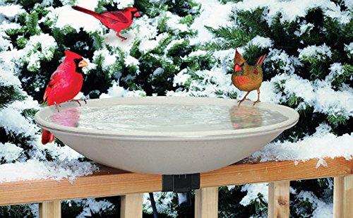 "Allied Precision 650 20"" 150 Watt Heated Bird Bath"