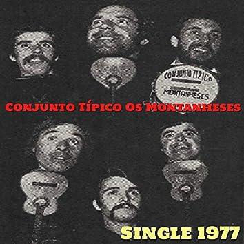 Single 1977