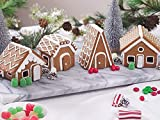 Fox Run Christmas Village Gingerbread House Cookie Cutter Set, 22 Piece, Stainless Steel,48750