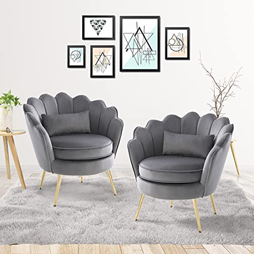 WQSLHX Gray Velvet Accent Chair Set of 2 for Living Room, Armchair Modern Accent Chair Vanity Chair for Bedroom, Comfy Arm Chair with Lumbar Pillow and Golden Metal Legs