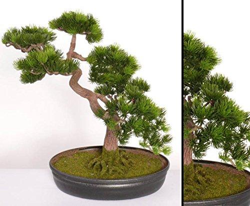 kunstpflanzen-discount.com Japanischer Pinien Bonsai mit ca. 318 Blättern, Höhe ca. 40cm - Künstlicher Pinien Bonsai mit Schale