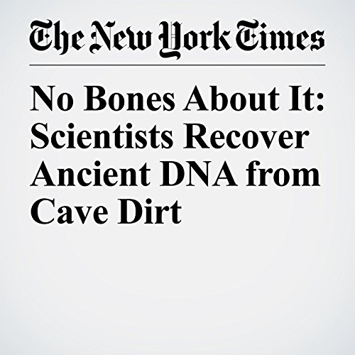 No Bones About It: Scientists Recover Ancient DNA from Cave Dirt audiobook cover art