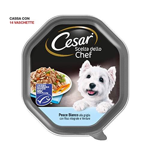 Cesar Scelta dello Chef Cibo per Cane, Pesce Bianco alla Griglia con Riso Integrale e Verdure 150 g - 14 Vaschette