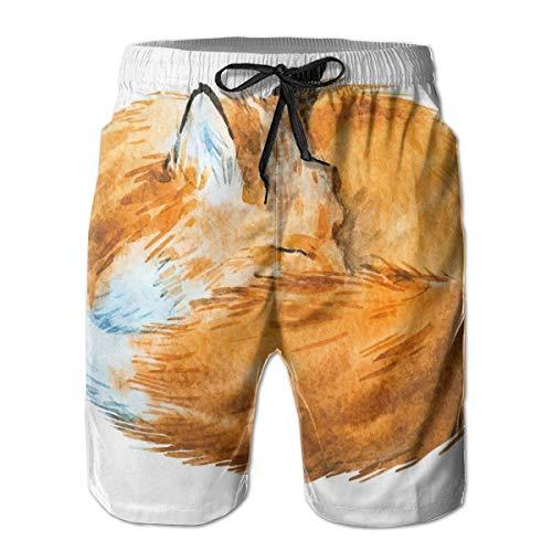Men's Sports Beach Shorts Board Shorts,Cute Fox Sleeping Deep Funny Creature Kids Nursery Watercolor Art Design,Surfing Swimming Trunks Bathing Suits Swimwear,Medium