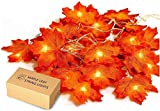 UNEEDE 2M 20 LED Feuilles d'automne Artificiel Érable Chaîne Fil Lumières Automne Guirlande Décoration à Piles pour Noël Halloween Fête de Mariage Vacances Maison Jardin Chambre