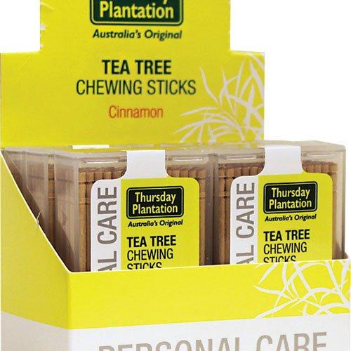 Thursday Plantation - Tea Tree Cinnamon Toothpicks, 100 Count - 6 Pack