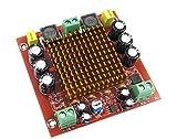 DollaTek TPA3116D2 Mono Channel Digital Amplifier Board NE5532 150W DC12-26V AMP Module for Car Home Theater and DIY Audio