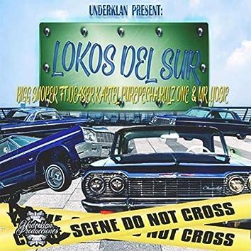 Lokos del Sur (feat. Mr Yosie, Kartel Purepecha, Rulz One & Daser)