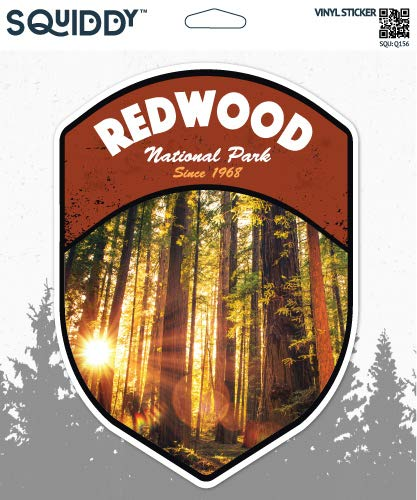 """Squiddy Redwood National Park - Vinyl Sticker Decal for Phone, Laptop, Water Bottle (3"""" Tall)"""