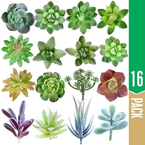 Elfranso Artificial Succulent Plants Unpotted - Premium 16 Pack of Small Fake Succulent Plants - Realistic Faux Mini Succulent Plants for Home Decor