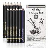 Best Charcoal Pencils - Premium Sketch Drawing Pencils - 24 Piece Professional Review