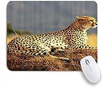 VAMIX マウスパッド 個性的 おしゃれ 柔軟 かわいい ゴム製裏面 ゲーミングマウスパッド PC ノートパソコン オフィス用 デスクマット 滑り止め 耐久性が良い おもしろいパターン (サファリヒョウ休憩アフリカサファリワイルドキャッツ自然絵プリント)