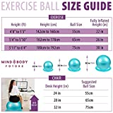Zoom IMG-1 mind body future palla svizzera