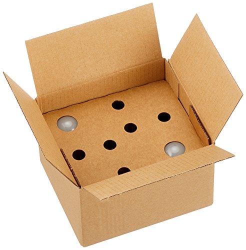 Amazon Basics 929001169504