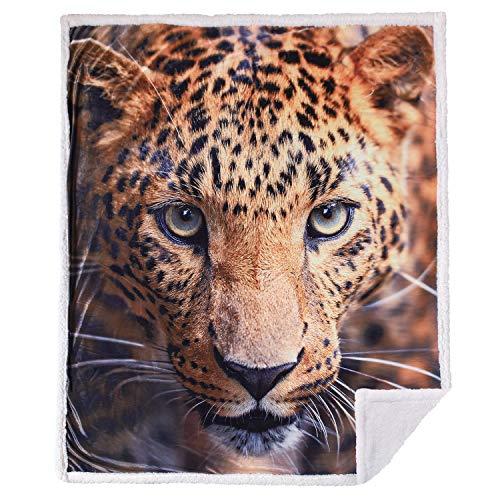 manta leopardo fabricante 5 STARS UNITED