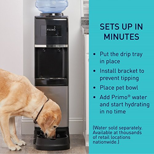 Primo - Easy Top Loading Water Dispenser - Stainless Steel - Pet Station